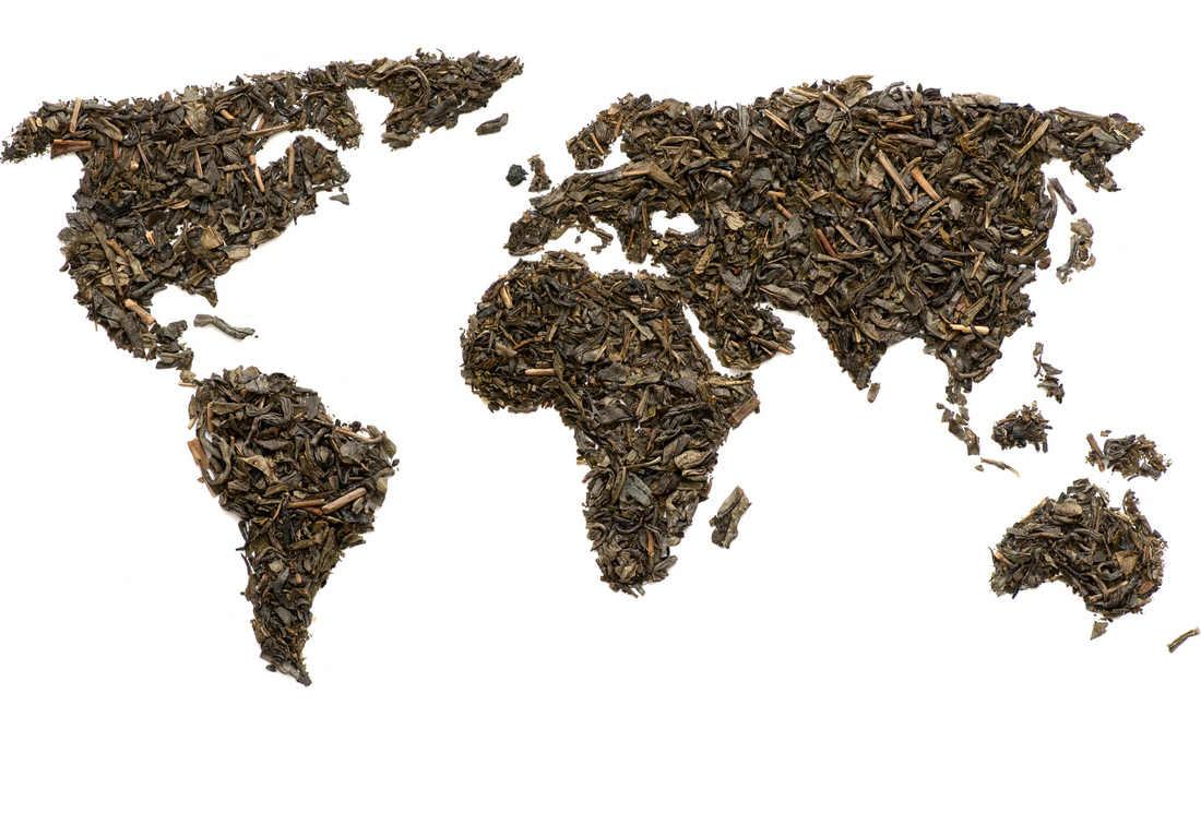 Kenya, Turquie, Argentine… : les nouveaux pays de production de thé