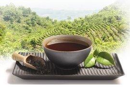 Hao Ling : ses bienfaits confirmés par une étude clinique