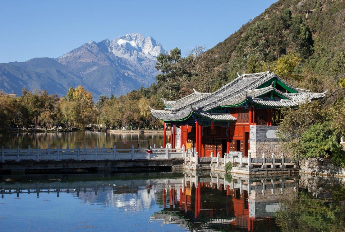 Origine du thé : la légende de Shennong