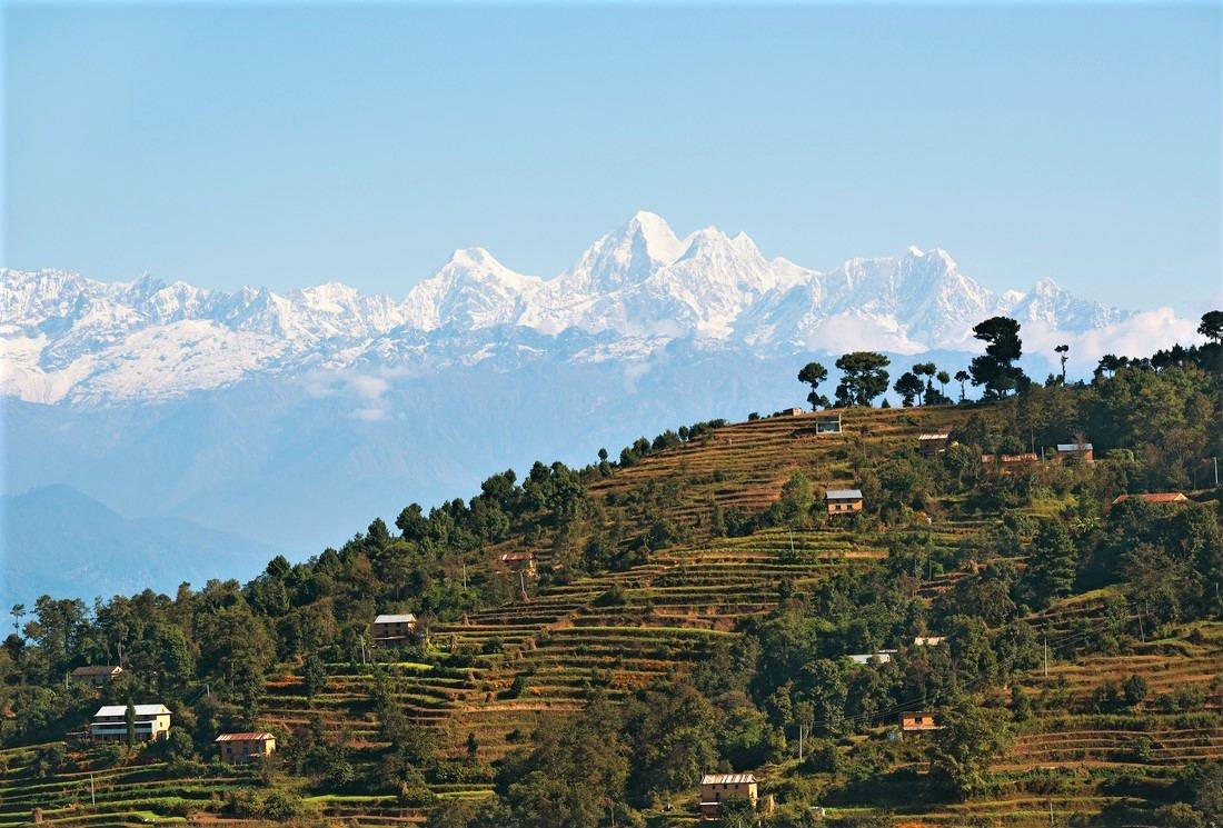 Les Thés du Népal